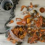 Eats New: Seafood Shack